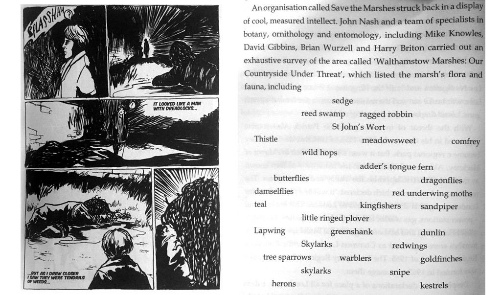 Scanned Pages of Marshland